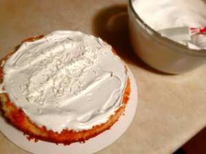 Coconut cake layer